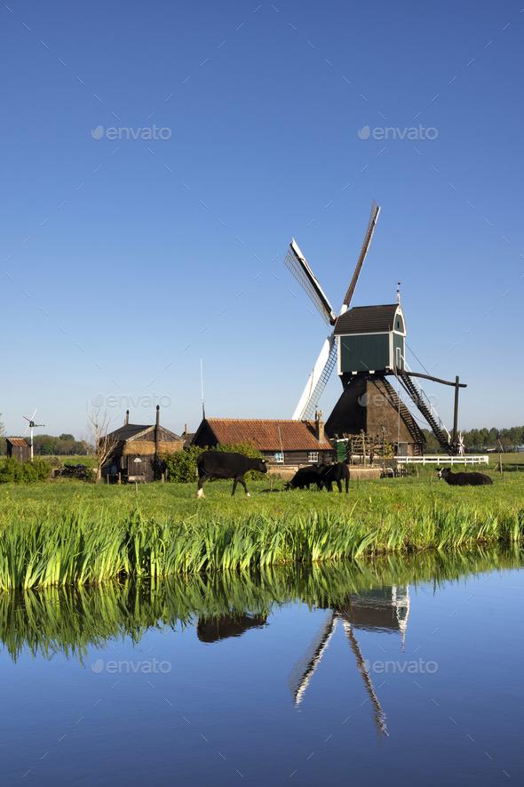The Wingerdse Molen - Stock Photo - Images