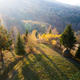 Autumn foliage in the mountains. - PhotoDune Item for Sale