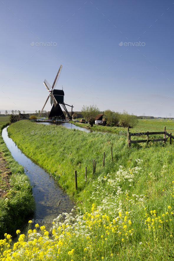 The Wingerdse windmill near Bleskensgraaf - Stock Photo - Images