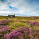 A Scottish shieling hut on peat bog near Stornoway - PhotoDune Item for Sale