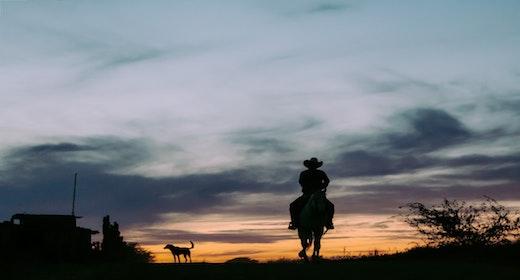 Wild West Music