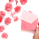 Hand keeps Pink envelope near pink flowers - PhotoDune Item for Sale