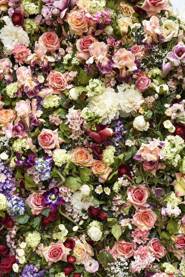 Flower Wall - Stock Photo - Images