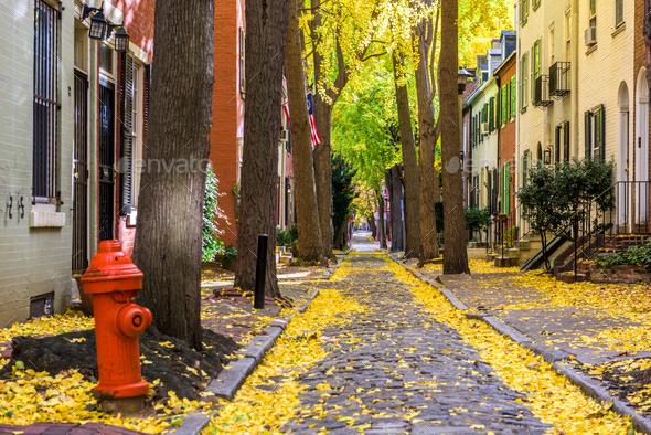 Autumn alleyway in Philadelphia, Pennsylvania, USA - Stock Photo - Images