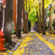 Autumn alleyway in Philadelphia, Pennsylvania, USA - PhotoDune Item for Sale