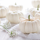 White pumpkins decoration for Thanksgiving - PhotoDune Item for Sale