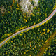 Aerial view of curve road and colorful autumn forest in Finland. - PhotoDune Item for Sale