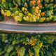 Aerial view of rural road in yellow and orange autumn forest - PhotoDune Item for Sale