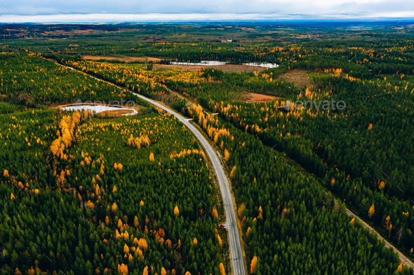Aerial view of rural road in yellow and orange autumn forest - Stock Photo - Images