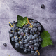 black grape with green leaves - PhotoDune Item for Sale