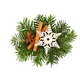 Pine cones and fir tree branch on a white background. - PhotoDune Item for Sale