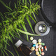 Marijuana buds flowers of cannabis, stethoscope,pills and oil. - PhotoDune Item for Sale