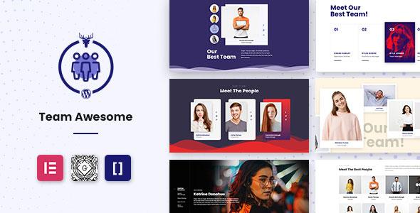 Team Awesome Pro - Team Member Showcase WordPress Plugin