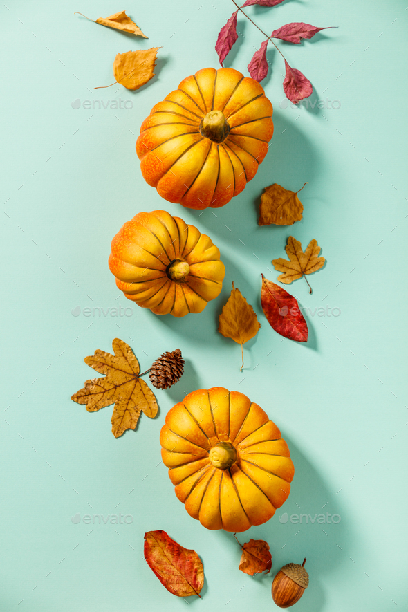 Autumn background creative layout with decorative small pumpkins and autumn leaves - Stock Photo - Images