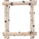 Frame of birch logs. For design - PhotoDune Item for Sale