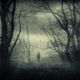 Mysterious traveler in dark fantasy forest with fog - PhotoDune Item for Sale