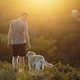 Man with dog walking on meadow at sunset - PhotoDune Item for Sale