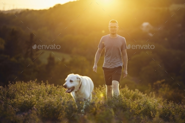 Man with dog walking on meadow at sunset - Stock Photo - Images