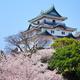 Japanese castle in wakayama - PhotoDune Item for Sale
