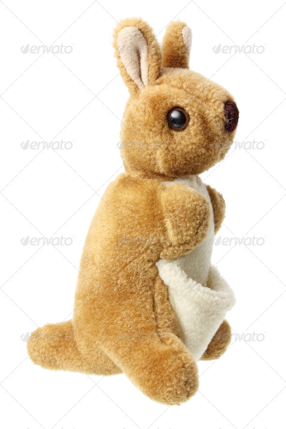 Kangaroo Soft Toy - Stock Photo - Images