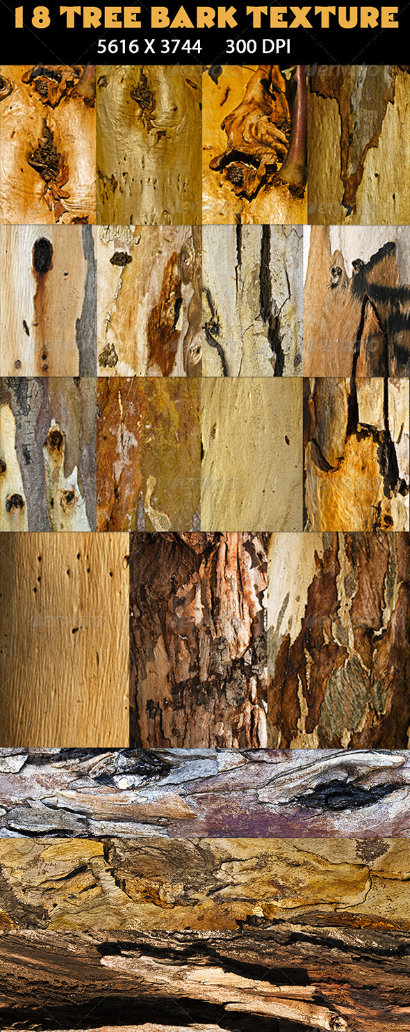 18 Tree Bark Texture - Wood Textures