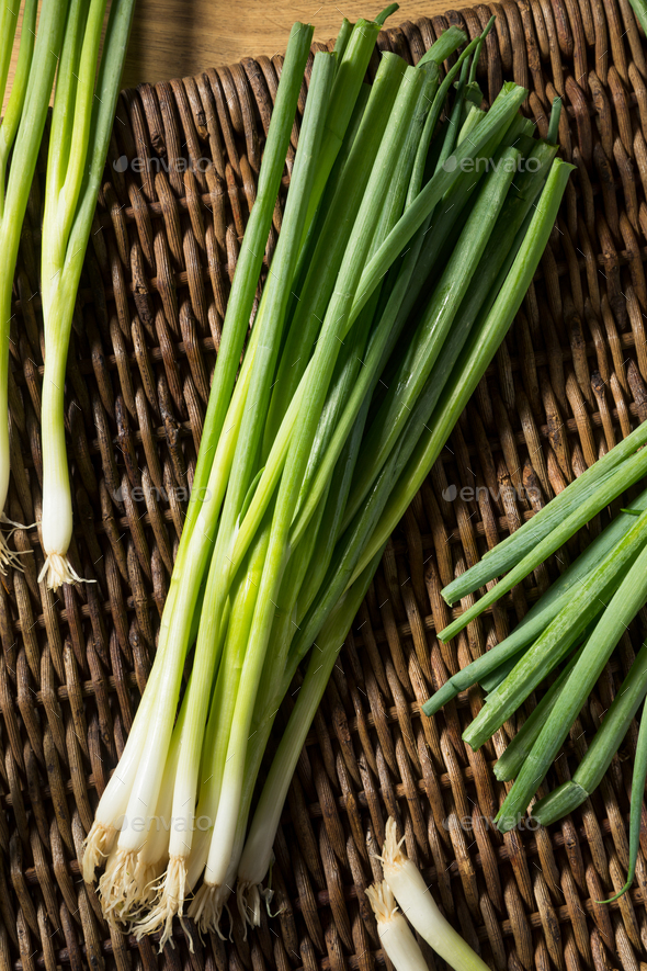 Raw Organic Green Onions - Stock Photo - Images