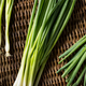 Raw Organic Green Onions - PhotoDune Item for Sale