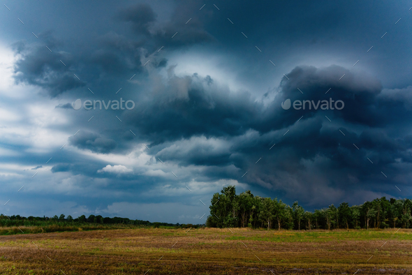 Stormy field - Stock Photo - Images