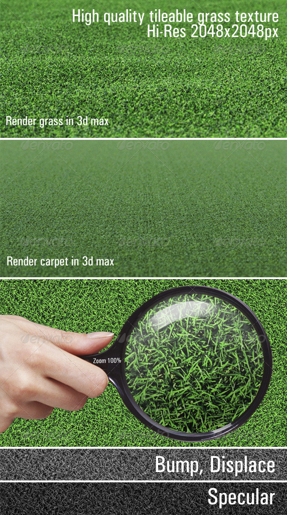 High quality tileable grass texture - 3DOcean Item for Sale