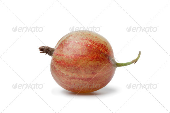 Whole single red Gooseberry - Stock Photo - Images