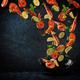 Food preparation, fresh prawns - PhotoDune Item for Sale