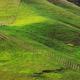 New Zealand hills - PhotoDune Item for Sale