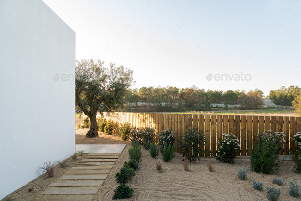 Garden in modern villa with pool and deck - Stock Photo - Images