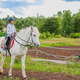 Girl riding a white horse on nature - PhotoDune Item for Sale