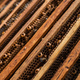 Close up view of the opened hive body showing the frames populated by honey bees. Honey bees crawl - PhotoDune Item for Sale