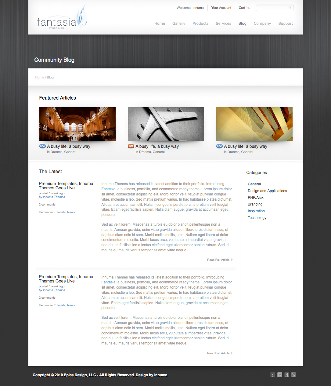 company portfolio template doc - fantasia business and portfolio template by innuma