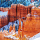 Winter in Bryce - PhotoDune Item for Sale