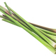 Pile of cut Lemongrass stems (Cymbopogon citratus)  isolated - PhotoDune Item for Sale