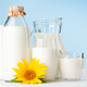 Milk in glass, bottle and jug - PhotoDune Item for Sale