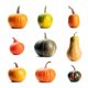 Pumpkin on white background isolated - PhotoDune Item for Sale