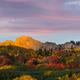Autumn in Colorado - PhotoDune Item for Sale