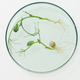 Overview of petri dish containing two lab-grown soy sprouts standing on table - PhotoDune Item for Sale