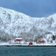 Red rorbu houses in Norway in winter - PhotoDune Item for Sale