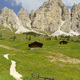 Mountain landscape along the road to Gardena pass, Dolomites - PhotoDune Item for Sale