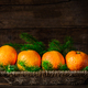 Fresh Clementines or Tangerines and Xmas Tree Branches - PhotoDune Item for Sale