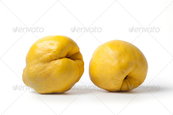 Two yellow quinces - Stock Photo - Images