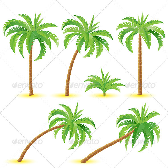 Coconut palms - Flowers & Plants Nature