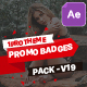Badges Sale Promo V19 - VideoHive Item for Sale