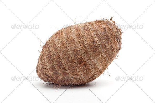 Whole single Taro root - Stock Photo - Images