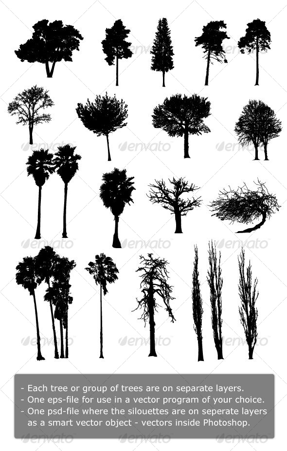19 Highly Detailed Vector Silhouettes of Trees - Flowers & Plants Nature